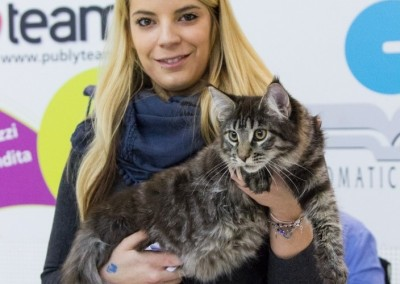 World Cat Show Monza (IT) 23/24 gennaio 2016 (WCF)