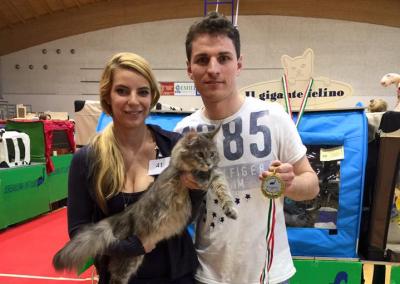 Cat Show Serenissima Baricella (IT) 30.04/01.05.2016 (WCF)