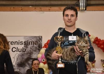 Cat Show Empoli (IT) 17/18 Dicembre 2016 (WCF)